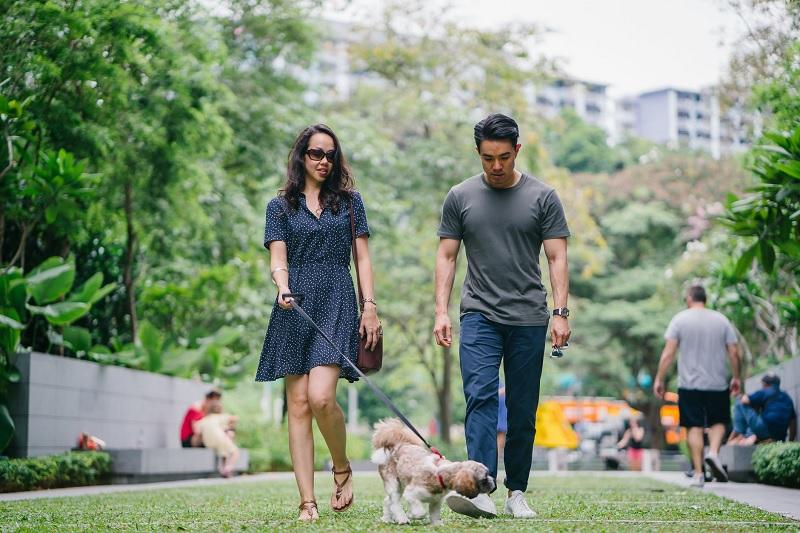 conflictos con mascotas en comunidad de vecinos